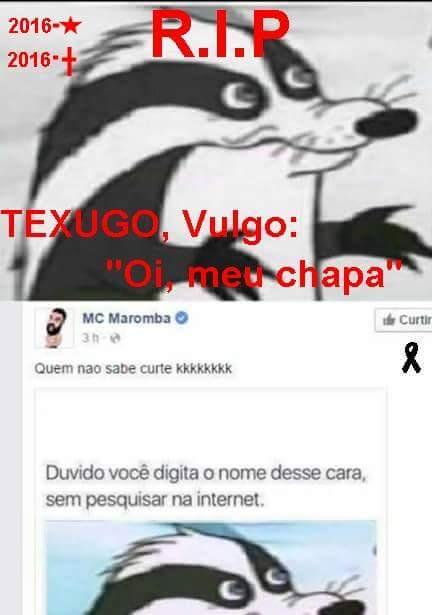 Texugo is dead - meme