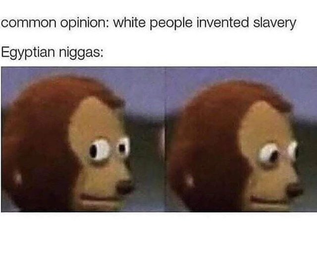White people did not invent slavery - meme