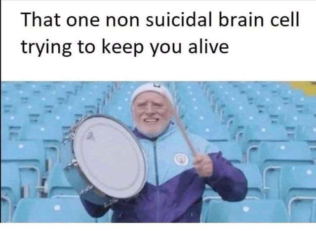 That one non suicidal brain cell trying to keep you alive - meme