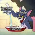 los profesores: