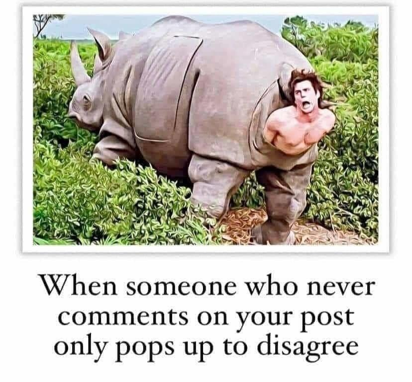 Haters - meme