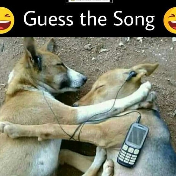 Guess the song - meme