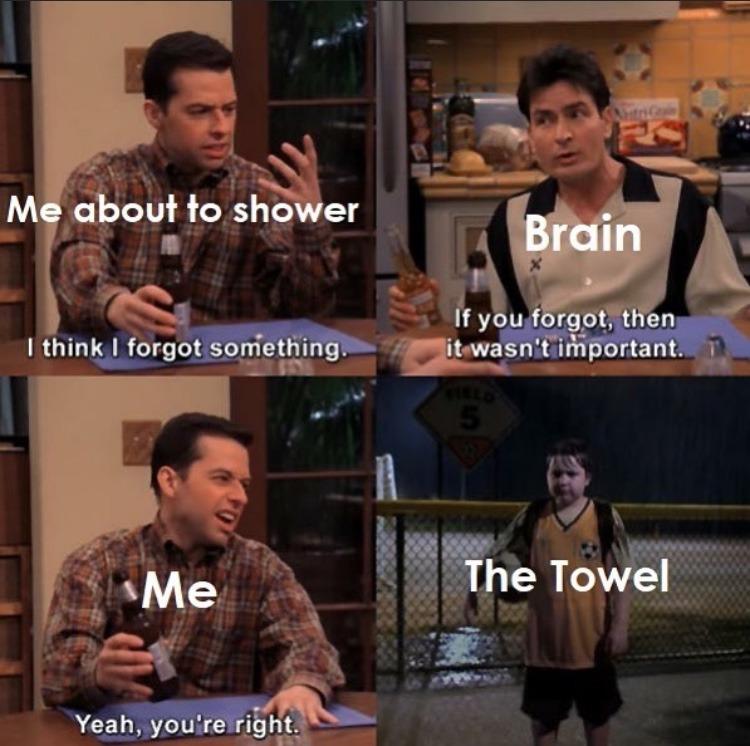 towel - meme