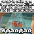 Nemo seaogao