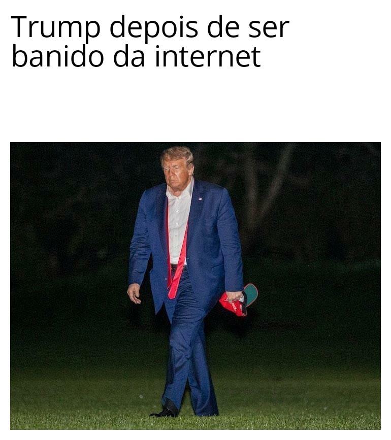 Sim, meme de pato Donald presidente