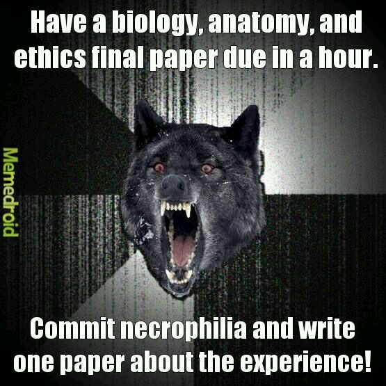 Finals are hard though. - meme