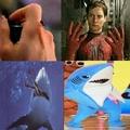 shark boy po