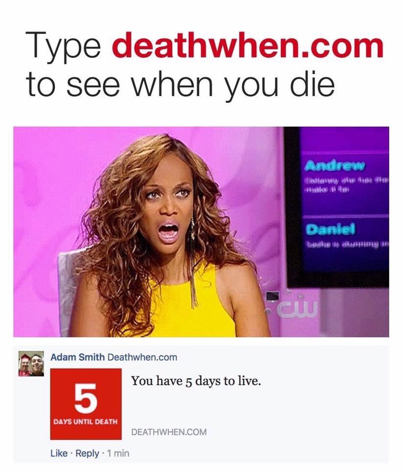 love this website - meme