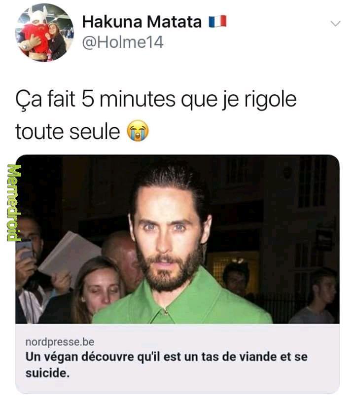 Un vegan se suicide après avoir manger un moucheron - meme