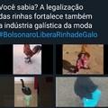 #BolsonaroLiberaRinhadeGalo