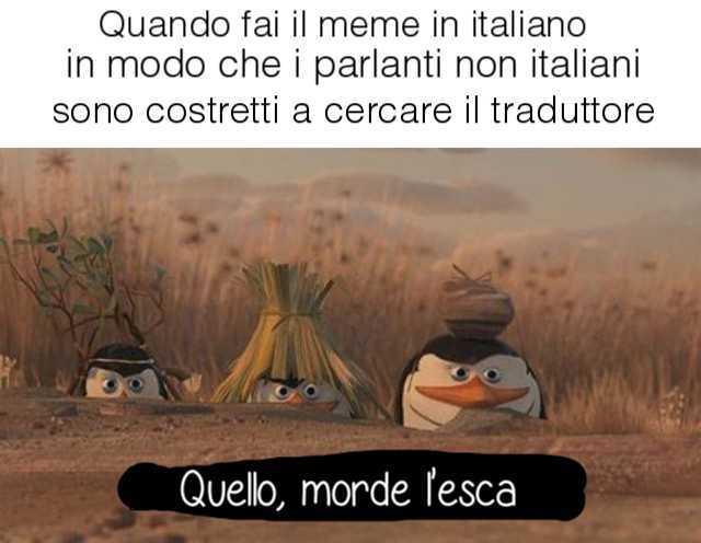 Buono - meme