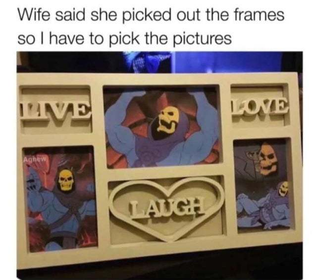 skeletor is amazing - meme