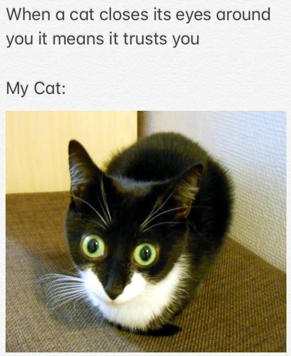 I have special eyes - meme