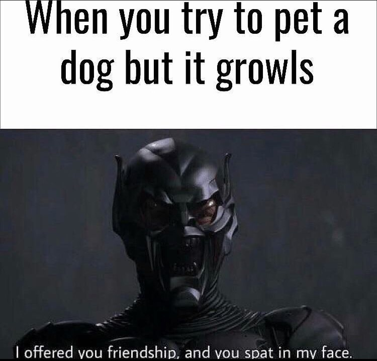friend - meme