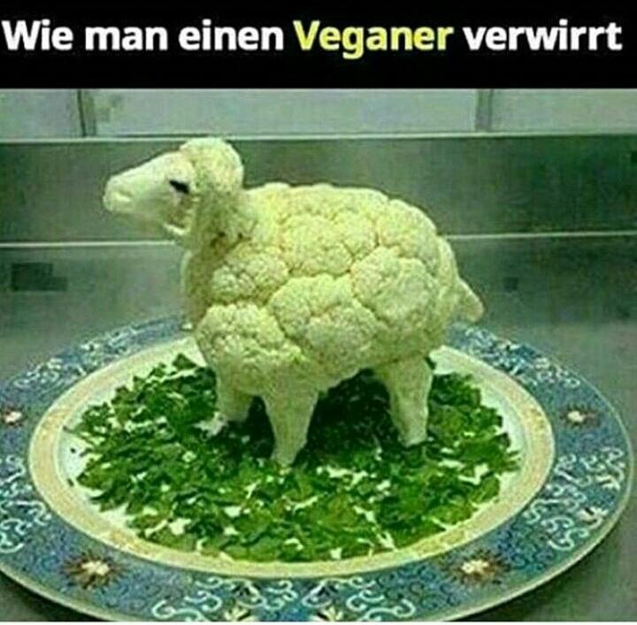 Veganer - meme