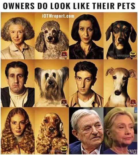 Hillary is bought by Islamic brotherhood of Saudi - meme