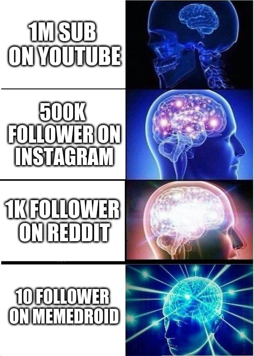 Brain Followers - meme