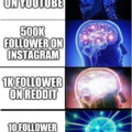 Brain Followers