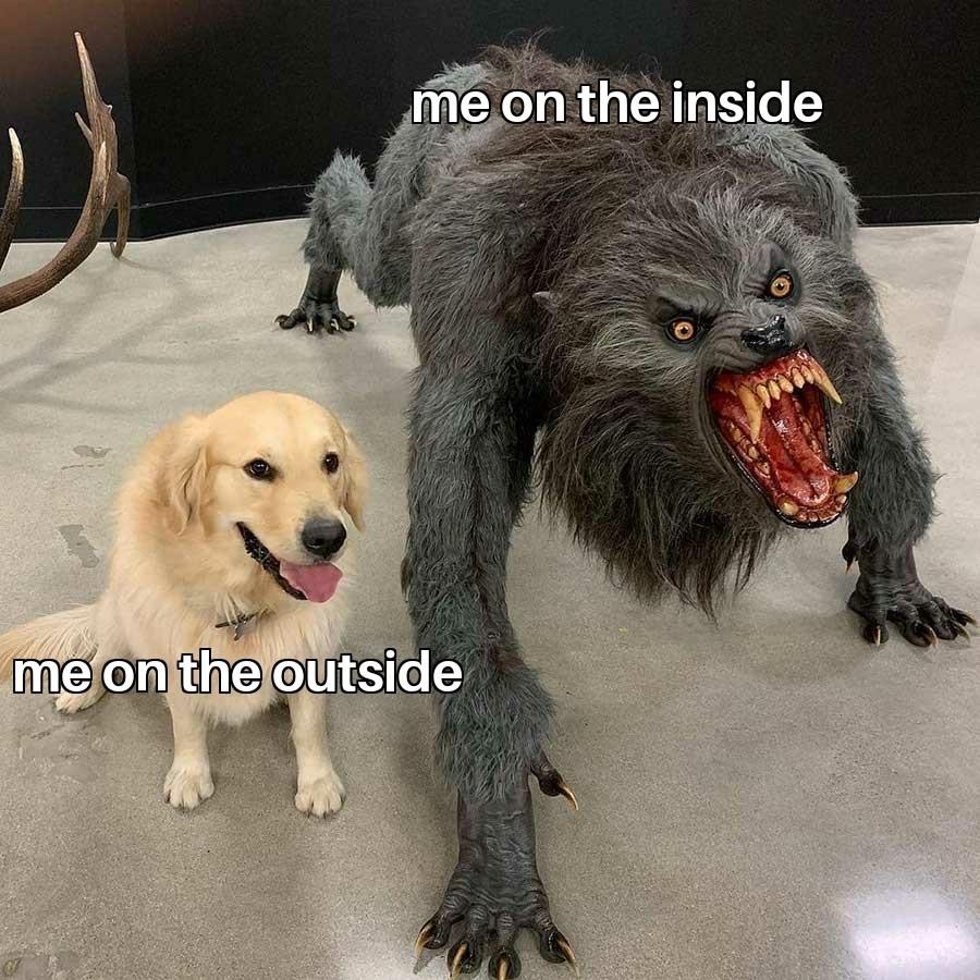 Bark - meme