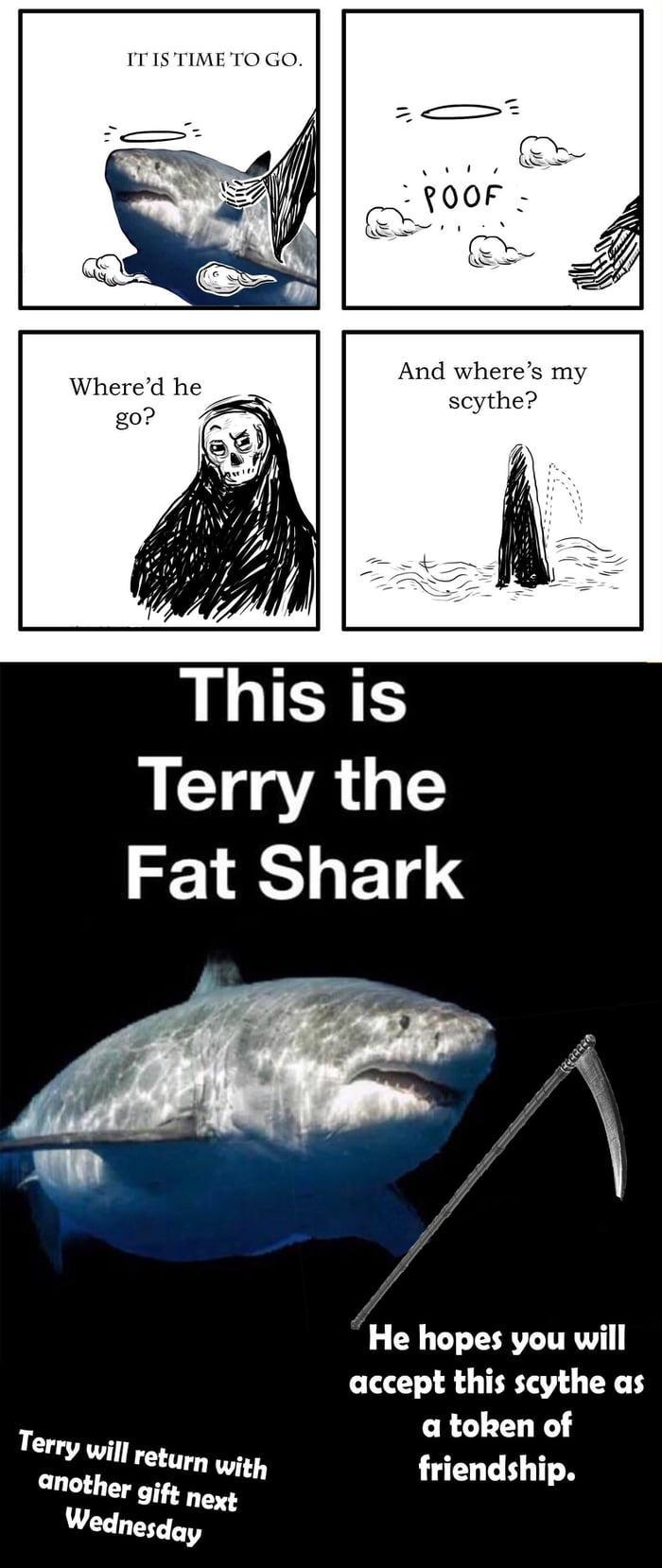 haven't seen terry yet. so this is his cousin Terry.(pronounced tear-ry) - meme