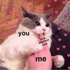 More wholesome memes for you guys