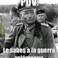 ¿Qué es POV?