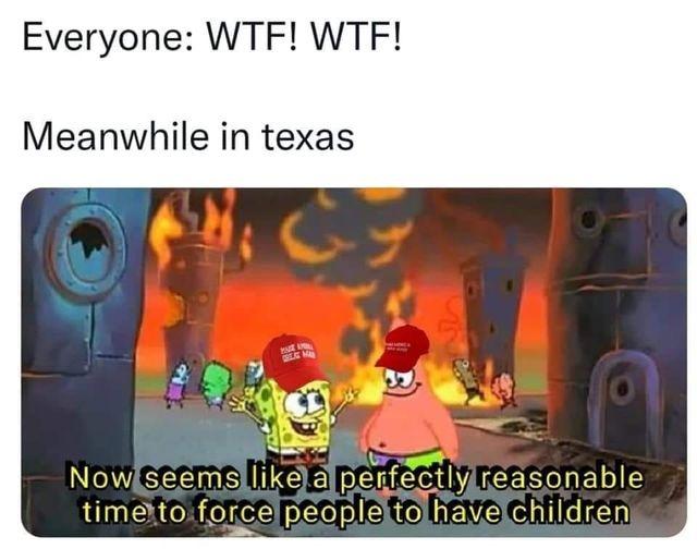 Texas anti-abortion bill be like - meme