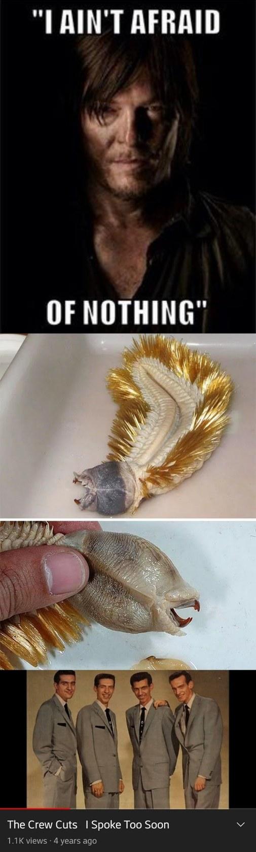 Nature is freaky - meme
