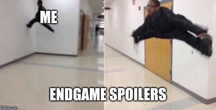 Floor is endgame spoilers - meme
