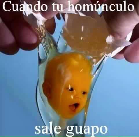 Madre mia wally - meme