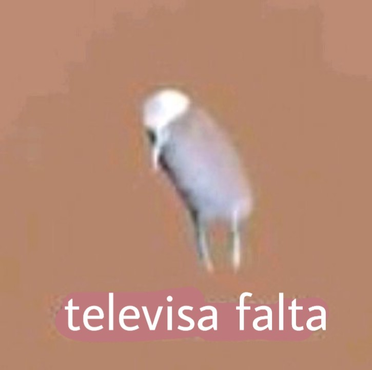Televisa falta - meme