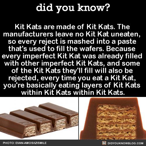 5816a76e9384d kit kat paradox ') meme by annabelle_s2014 ) memedroid
