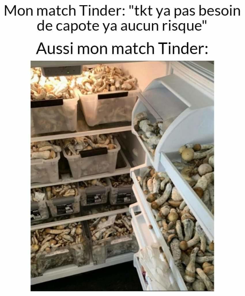 Champignons frais - meme