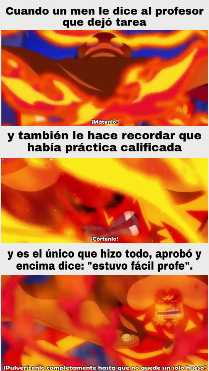 Meme de one piece