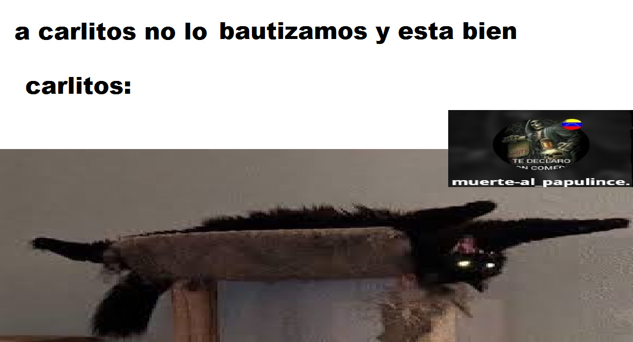 carlitos ._. - meme