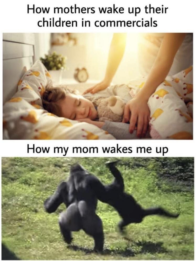 daily struggles  - meme