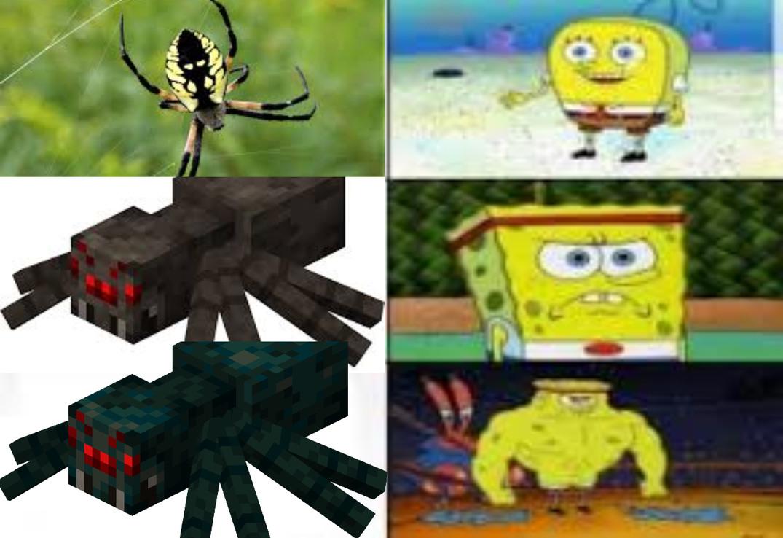 cave spider meme