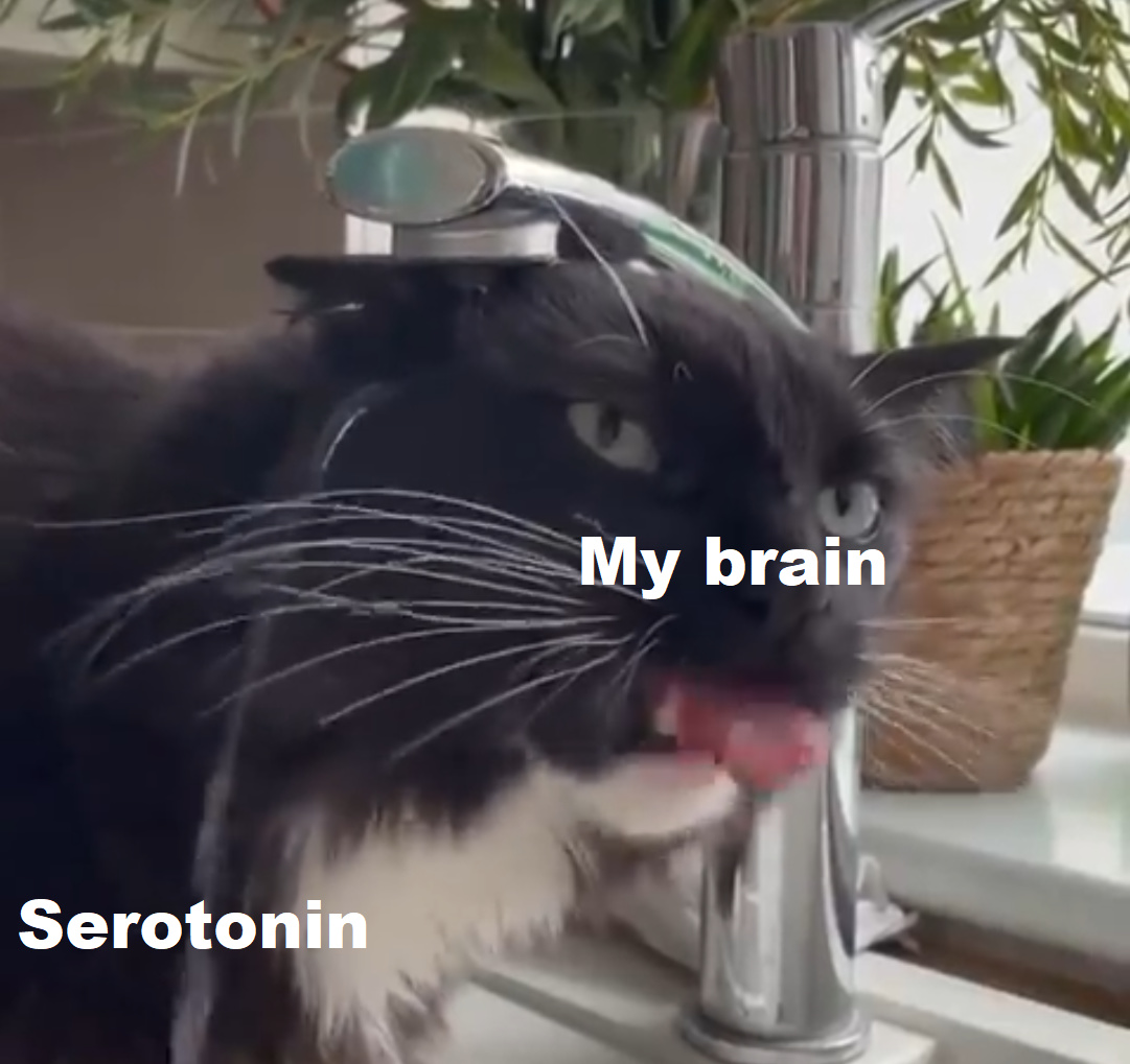 Oh no depressio - meme