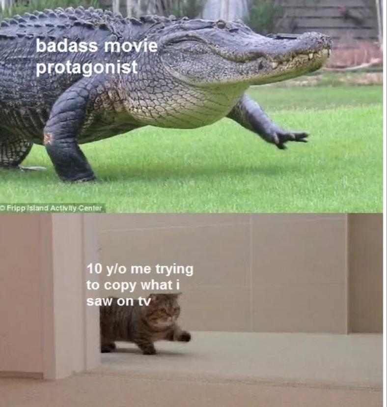 I do this even now. - meme