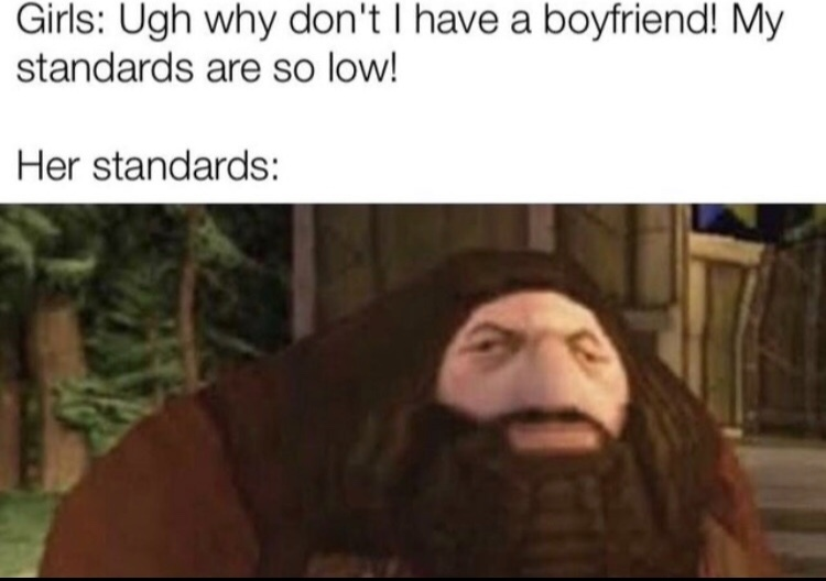 it's so hard to reach her standards - meme