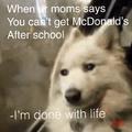 No McDonald's