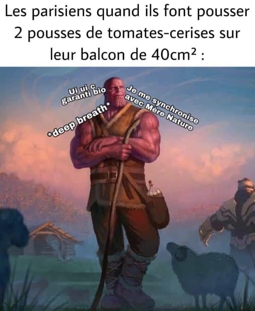 vui sacré parisiens - meme