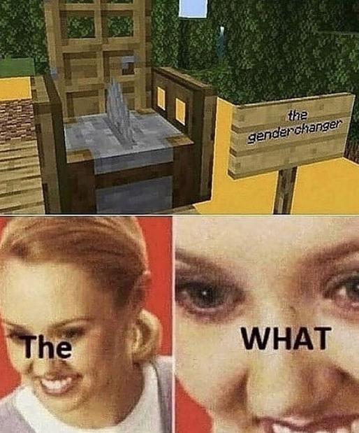 Gender - meme