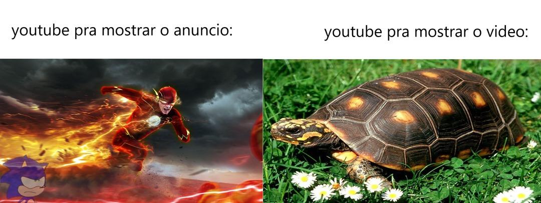 Fiz - meme