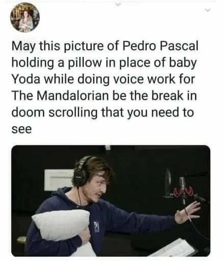 Pedro's Pillows - meme