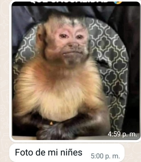 Wtf mi papá es chad - meme