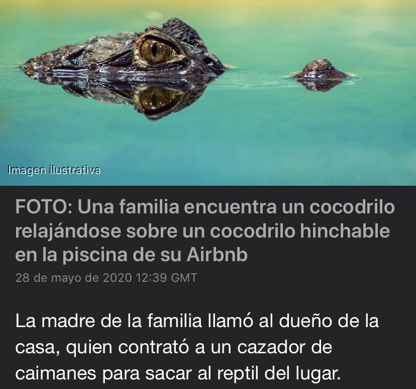 cocodrilin - meme