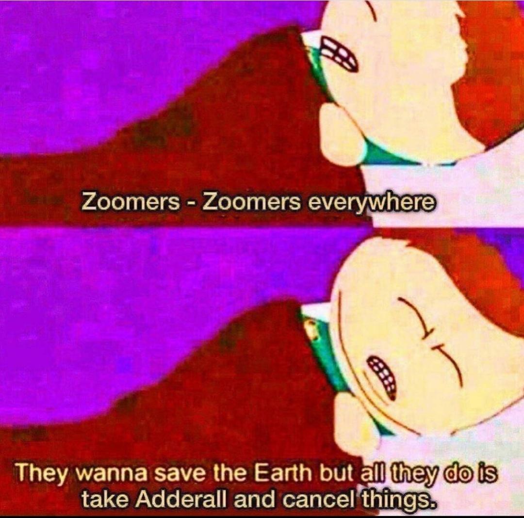 Fukin zoomers - meme