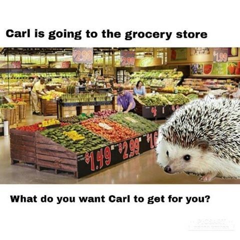 Carl goes to the grocery store - meme