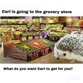 Carl goes to the grocery store